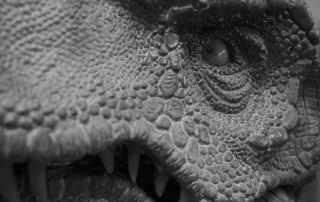 dettaglio replica dinosauro T-Rex