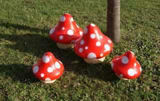 Prop funghi