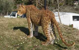 Replica Leopardo