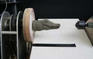 Scannerizzazione 3D scultura