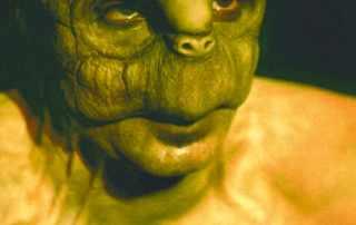 make up tartaruga